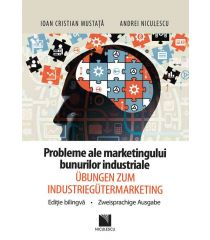 Probleme ale marketingului bunurilor industriale / Ubungen zum industriemarketing
